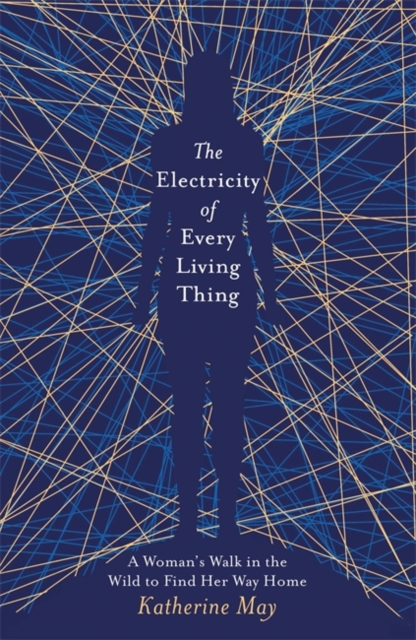 jacket for The Electricity of Every Living Thing - features a femme body shape in dark blue in front of a criss-crossing network of angular lines in light blue and yellow